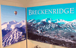 Business Branded Murals Large Format Printing from IMS Colorado Printing Lone Tree Colorado